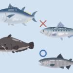 海の豊かさを守るために「食べられるお魚」を調べてみた